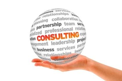 Econoxy Consultant